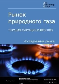 Рынок природного газа. Текущая ситуация и прогноз 2017-2021 гг.
