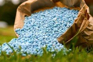 Внутреннее потребление минеральных удобрений в России сокращается, объемы экспорта демонстрируют рост