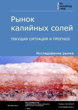 Рынок калийных солей. Текущая ситуация и прогноз 2018-2022 гг.