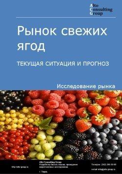 Рынок свежих ягод. Текущая ситуация и прогноз 2018-2022 гг.