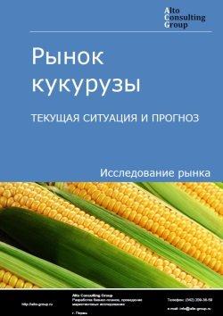 Рынок кукурузы. Текущая ситуация и прогноз 2019-2023 гг.