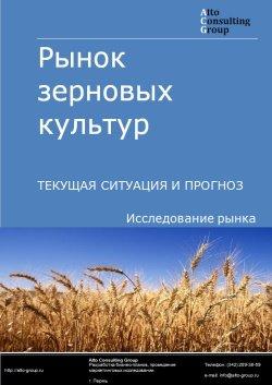 Рынок зерновых культур. Текущая ситуация и прогноз 2019-2023 гг.