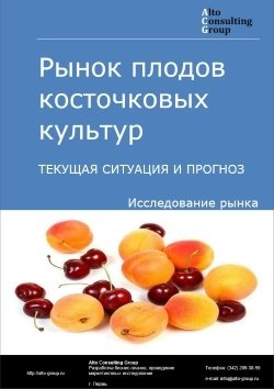 Рынок плодов косточковых культур (слива, вишня, черешня, абрикос, персик). Текущая ситуация и прогноз 2019-2023 гг.