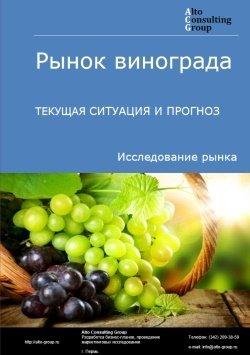 Рынок винограда. Текущая ситуация и прогноз 2019-2023 гг.