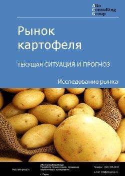 Рынок картофеля. Текущая ситуация и прогноз 2019-2023 гг.